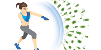 immunity – vitamin D – barrier effect – gut microbiota – microorganisms – bacteria